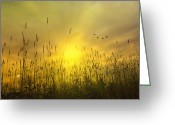 Book Cover Greeting Cards - Sunsets To Remember Greeting Card by Thomas York