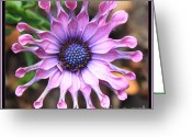Pink And Purple Greeting Cards - Superstar Greeting Card by Carol Groenen
