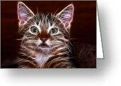 Cat Picture Greeting Cards - Suprise Greeting Card by Tilly Williams