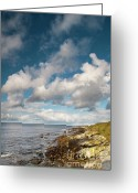 Mayo Greeting Cards - Surf meets turf Greeting Card by Marion Galt