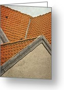 Tiled Roof Greeting Cards - Surfs Up Greeting Card by Odd Jeppesen