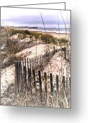 Myrtle Beach South Carolina Greeting Cards - Surfside Beach SC Dunes  Pier Greeting Card by Joe Granita