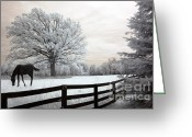 Surreal Landscape Greeting Cards - Surreal Fantasy Horse In Nature Landscape Greeting Card by Kathy Fornal