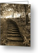 Staircase Greeting Cards - Surreal Fantasy Staircase Nature Woodlands Greeting Card by Kathy Fornal