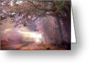Tree Limbs Greeting Cards - Surreal Foggy Scenic Drive Nature Landscape  Greeting Card by Kathy Fornal