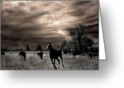 Storm Prints Greeting Cards - Surreal Horses Infrared Nature  Greeting Card by Kathy Fornal