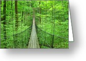 Indiana Photography Photo Greeting Cards - Suspension Bridge Greeting Card by Daniel Muller