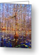 The Swamp Greeting Cards - Swamp Tree Greeting Card by Susanne Van Hulst