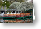 Suffolk County Greeting Cards - Swan Boat Spring Greeting Card by Susan Cole Kelly