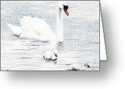 Duck Drawings Greeting Cards - Swan Family Greeting Card by Brent Ander