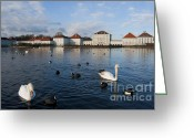 Nymphenburg Greeting Cards - Swans seen at Nymphenburg Palace Greeting Card by Andrew  Michael