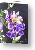 Tiny Flowers Greeting Cards - Sweet Bee Greeting Card by Carol Groenen