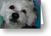 Bichon Greeting Cards - Sweet Cotton Greeting Card by Patti Siehien