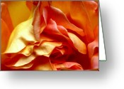 Photographers Fine Art Greeting Cards - Sweet Folds Greeting Card by Louie Rochon