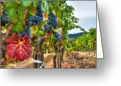 Cabernet Sauvignon Greeting Cards - Sweet Harvest Greeting Card by Mars Lasar