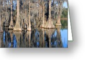 Rick Mckinney Greeting Cards - Sweet Home Florida Greeting Card by Rick McKinney