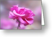 Flower Blossom Greeting Cards - Sweet in Pink Greeting Card by Linda Phelps