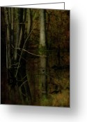 Dark Moss Green Photo Greeting Cards - Sweet is the Swamp Greeting Card by Rebecca Sherman