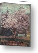 Grunge Greeting Cards - Sweet Kisses Under the Tree Greeting Card by Laurie Search