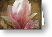 Magnolia Mixed Media Greeting Cards - Sweet Magnolia Greeting Card by Rosy Hall