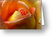 Ghost Photographs Greeting Cards - Sweet Morning Tear Greeting Card by Louie Rochon
