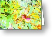 Droid Greeting Cards - Sweet Rose Buds #android #andrography Greeting Card by Marianne Dow