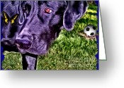 Lab Greeting Cards - Sweet Soccer Lab Greeting Card by Tisha McGee