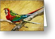 Red Birds Greeting Cards - Sweet Sweet Love Greeting Card by Lois Bryan