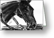 Western Pencil Drawings Greeting Cards - Sweetie - black horse painting Greeting Card by Gunilla Wachtel