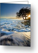 Ebb Greeting Cards - Swept out to Sea Greeting Card by Mike  Dawson