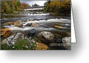 Aster  Photo Greeting Cards - Swiftwater Covered Bridge - D007089 Greeting Card by Daniel Dempster