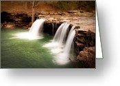 Tamyra Ayles Greeting Cards - Swimming Hole Greeting Card by Tamyra Ayles