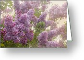 Romantic Floral Greeting Cards - Swimming in a sea of lilacs Greeting Card by Cindy Garber Iverson