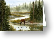 Horse Greeting Cards Painting Greeting Cards - Swimming Lessons Greeting Card by Ellen Strope