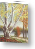 Autumn Leaves Pastels Greeting Cards - Sycamore by the Savannah in Autumn Greeting Card by Pamela Poole