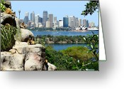 Cruise Ship Greeting Cards - Sydney Harbor From The Zoo Greeting Card by Ellen Henneke