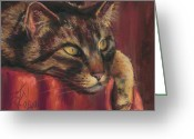 Calico Cat Greeting Cards - Tabby Nap Greeting Card by Billie Colson