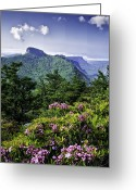 Mountain Laurel Greeting Cards - Table Rock Greeting Card by Rob Travis