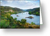 Train Photo Greeting Cards - Tagus Landscape Greeting Card by Carlos Caetano