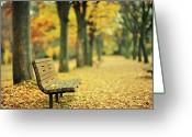 Empty Park Bench Greeting Cards - Take A Seat And Enjoy The View Greeting Card by Photo by Glenn Waters in Japan