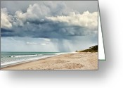 Melbourne Beach Greeting Cards - Take Cover Greeting Card by Cheryl Davis