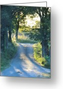Country Lanes Photo Greeting Cards - Take Me Home Greeting Card by Jan Amiss Photography
