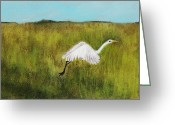 Grass Pastels Greeting Cards - Takeoff Greeting Card by Anastasiya Malakhova