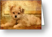 Brown Dogs Digital Art Greeting Cards - Taking A Break Greeting Card by Angie McKenzie