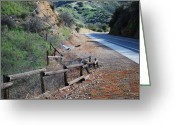 Split Rail Fence Greeting Cards - Taking Flight Greeting Card by Franklin Hanna