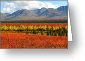 Colors Of Autumn Greeting Cards - Talkeetna Mountains Moment Greeting Card by Alan Lenk