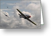 Raf Greeting Cards - Tally Ho Greeting Card by Pat Speirs