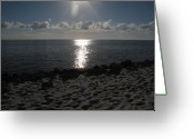 Sunset Posters Greeting Cards - Tampa Bay at Sunset Greeting Card by Ann Willmore