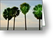 Florida Bridge Digital Art Greeting Cards - Tampa Bay Greeting Card by Bill Cannon