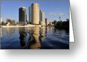 Sculling Greeting Cards - Tampa Florida 2010 Greeting Card by David Lee Thompson